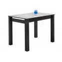 Стеклянный стол Раймунд венге