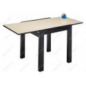 Стеклянный стол Джорах бежевый / венге