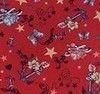 Красный Якоря
