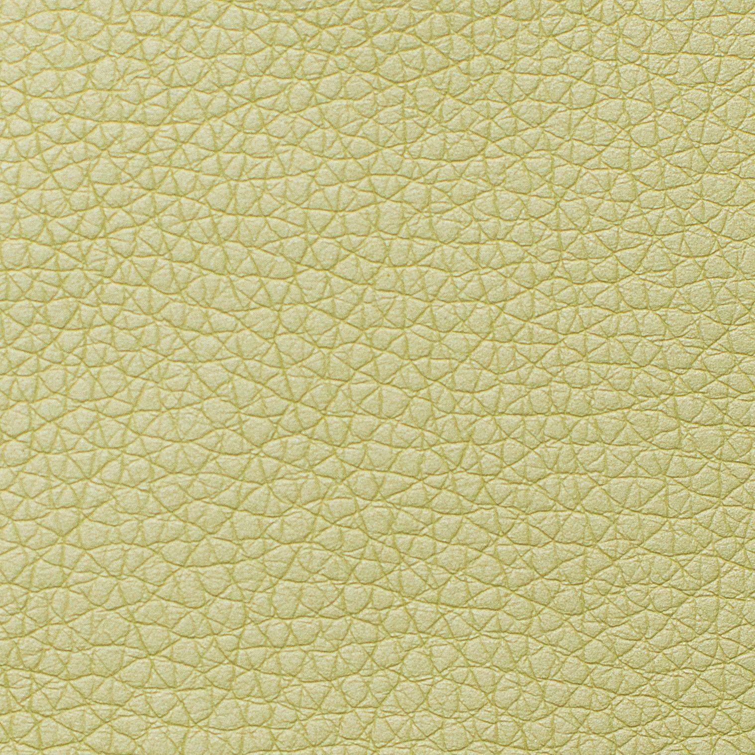 Иск. кожа Dollaro - Светло-зеленый 66